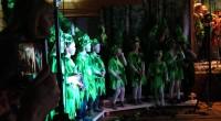 Barna ved Forradal Skole fremførte i kveld musikalen «Den Levende Skogen». Foran en fullsatt sal imponerte barna sitt publikum med mange fine sanger og humoristiske replikker. Budskapet om å ta […]