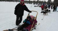 Lørdag 10 mars arrangerte Fau ved Forradal Oppvekstsenter tur til Kopperå og Bodil Bakkens Norway Husky Adventure. Mange barn med foreldre hadde tatt turen for å oppleve hundekjøring med slede. […]